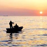 Як ловити рибу
