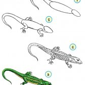 Як намалювати ящірку