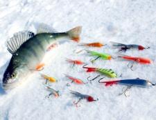 Як спіймати рибу взимку