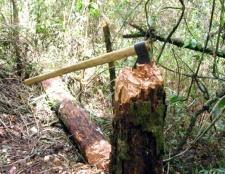 Як рубати дрова